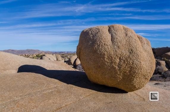 USA - California - Joshua national park-32