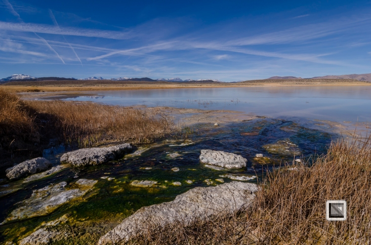 USA - California - Mono Lake-2
