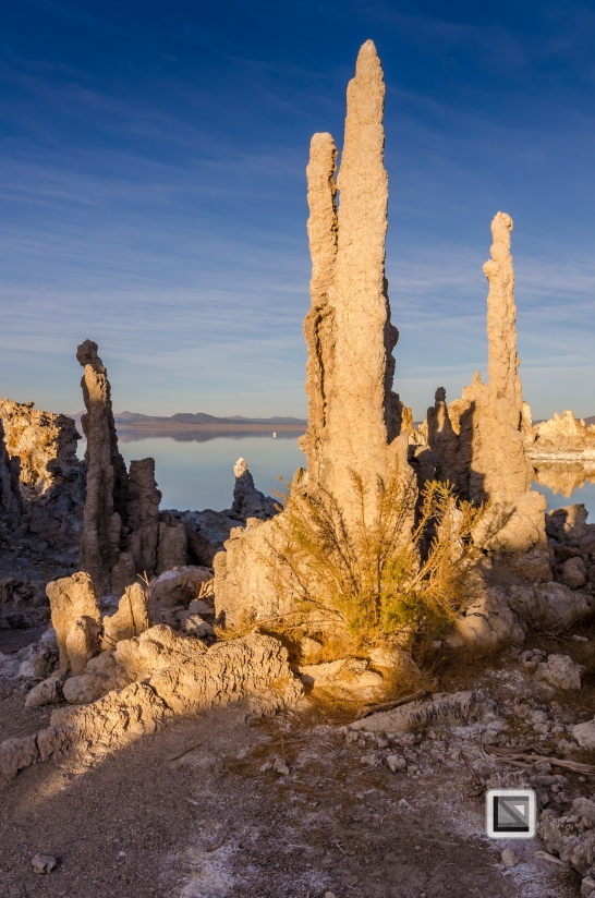 USA - California - Mono Lake-21