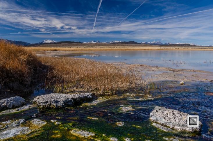 USA - California - Mono Lake-3