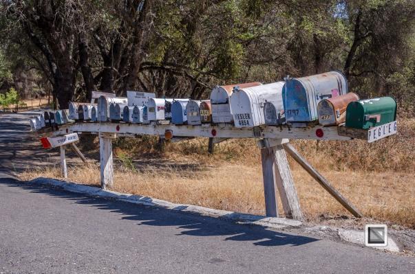 USA California - Yosemite National Park-20