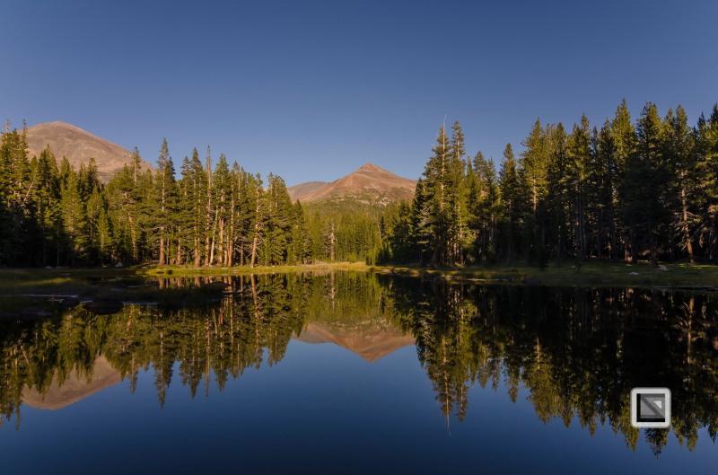 USA California - Yosemite National Park-5