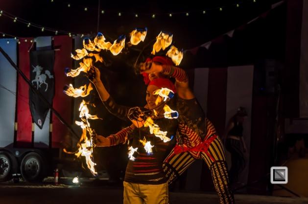 USA - Nevada - Burning Man Festival-114