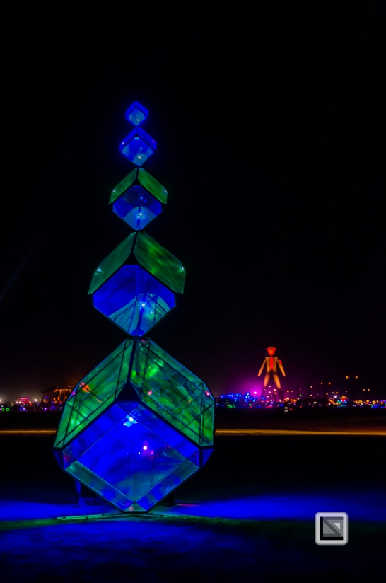 USA - Nevada - Burning Man Festival-123