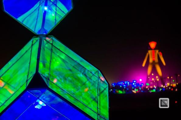 USA - Nevada - Burning Man Festival-124