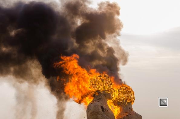 USA - Nevada - Burning Man Festival-128