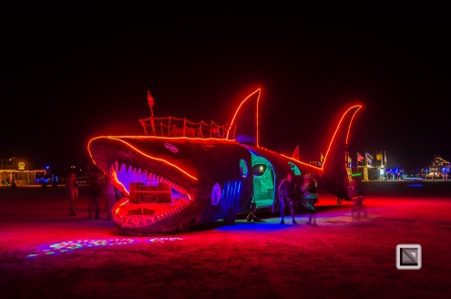 USA - Nevada - Burning Man Festival-138