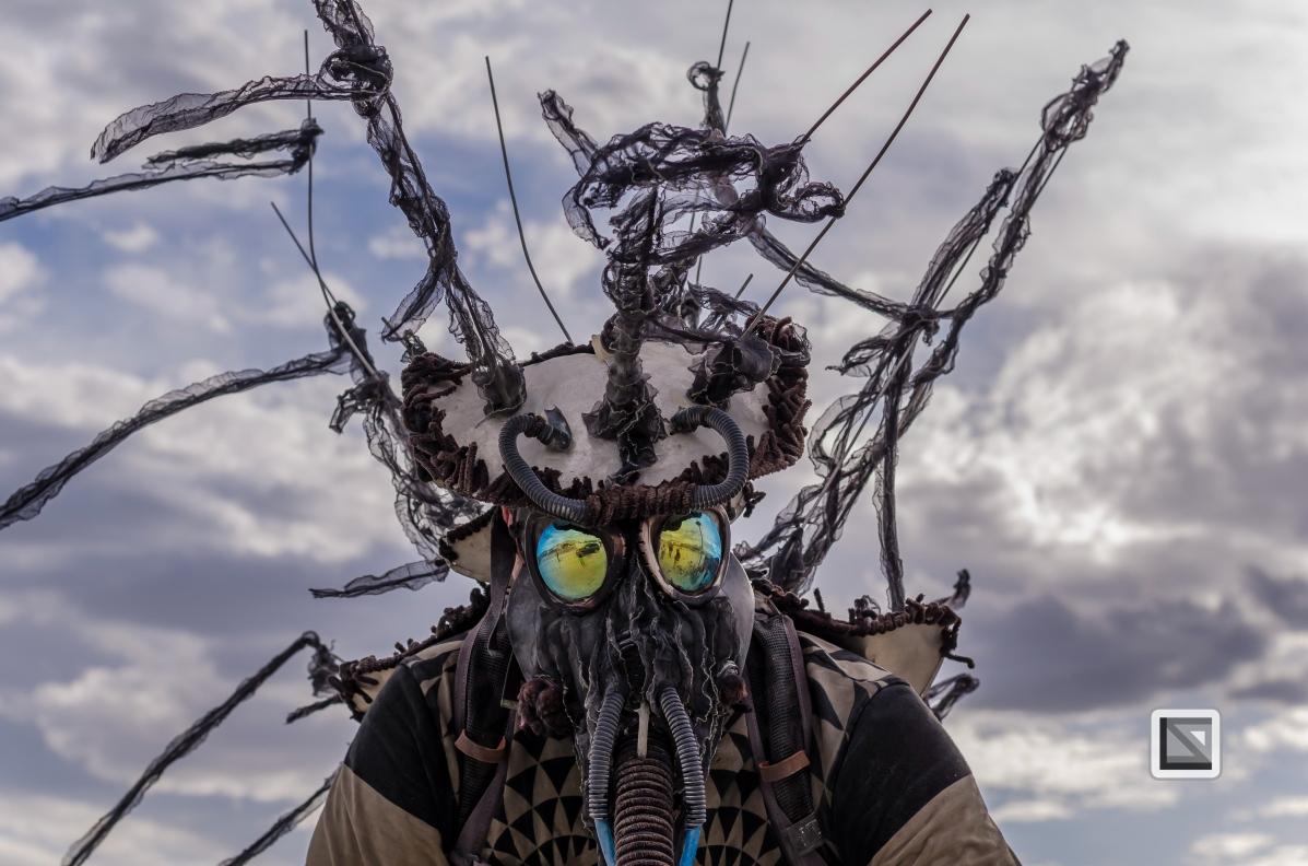 USA - Nevada - Burning Man Festival-156