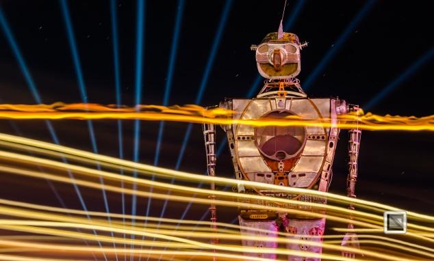 USA - Nevada - Burning Man Festival-24