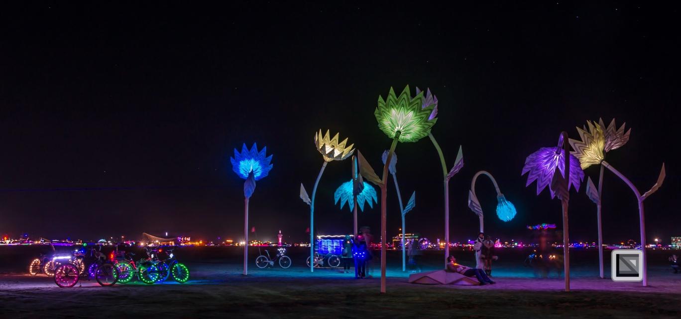 USA - Nevada - Burning Man Festival-28