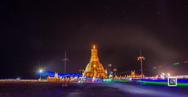 USA - Nevada - Burning Man Festival-45