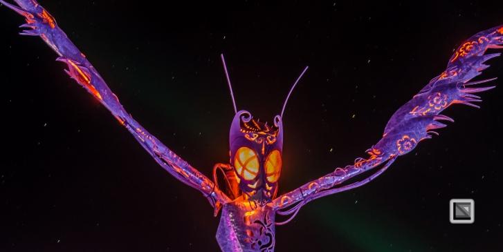 USA - Nevada - Burning Man Festival-50