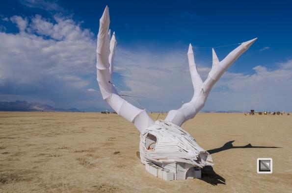 USA - Nevada - Burning Man Festival-5