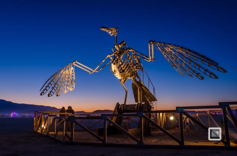 USA - Nevada - Burning Man Festival-66