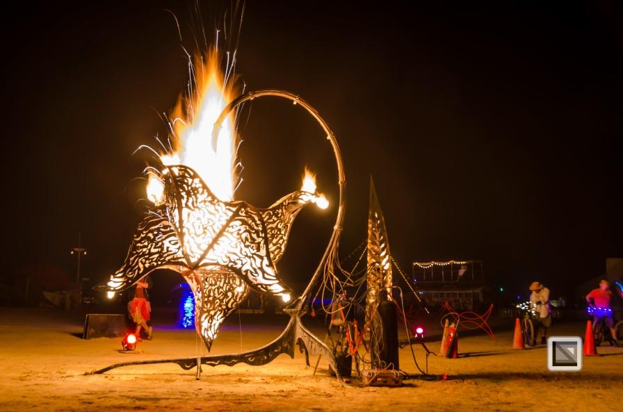 USA - Nevada - Burning Man Festival-67