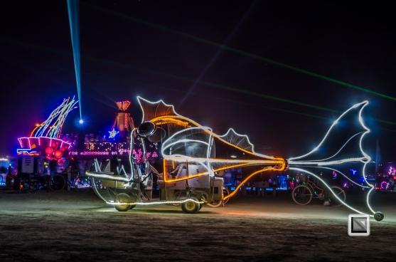 USA - Nevada - Burning Man Festival-83