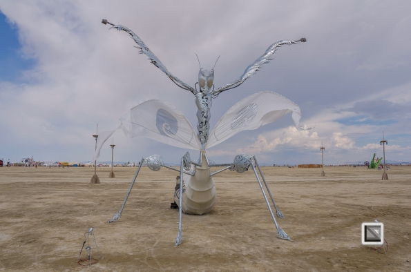USA - Nevada - Burning Man Festival