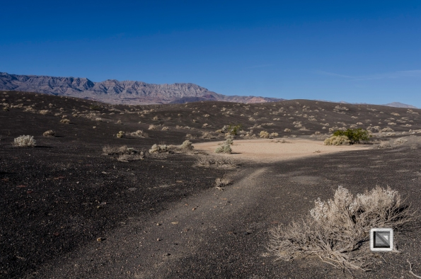 USA - Nevada - Death Valley-2