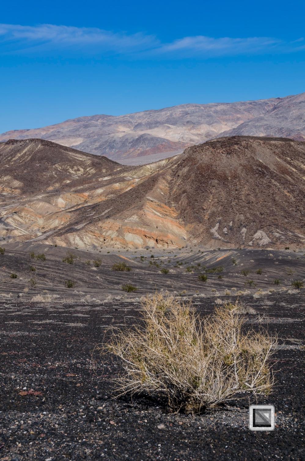 USA - Nevada - Death Valley-20