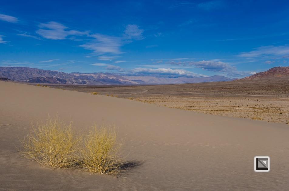 USA - Nevada - Death Valley-35