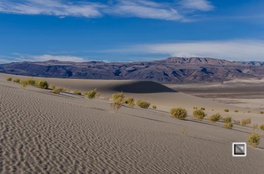 USA - Nevada - Death Valley-36