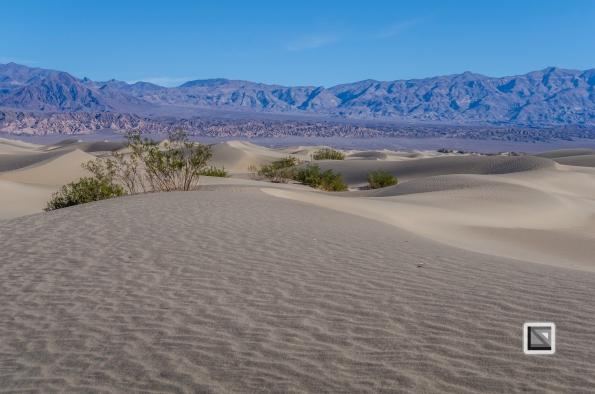 USA - Nevada - Death Valley-62