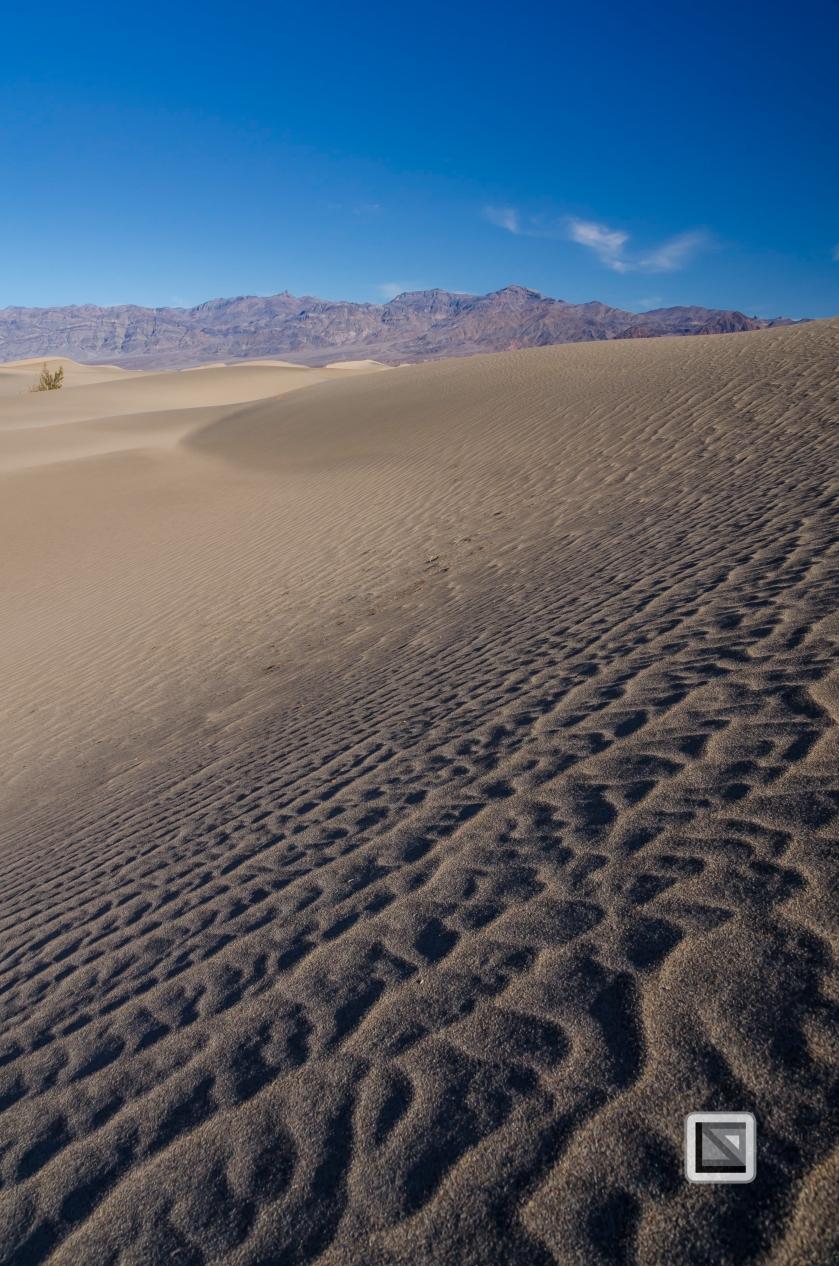 USA - Nevada - Death Valley-67