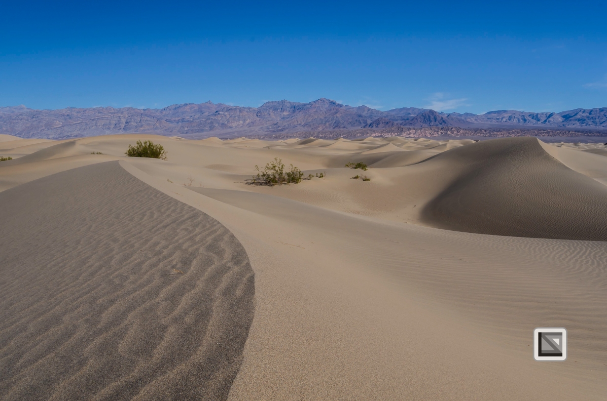 USA - Nevada - Death Valley-71