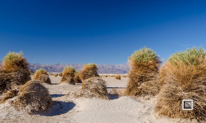 USA - Nevada - Death Valley-75