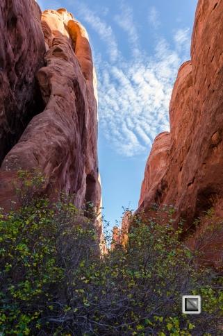 USA - Utah - Arches National Park-11