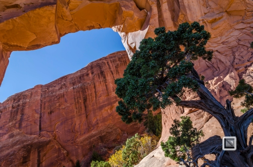 USA - Utah - Arches National Park-20