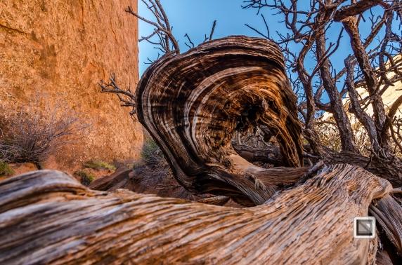 USA - Utah - Arches National Park-34