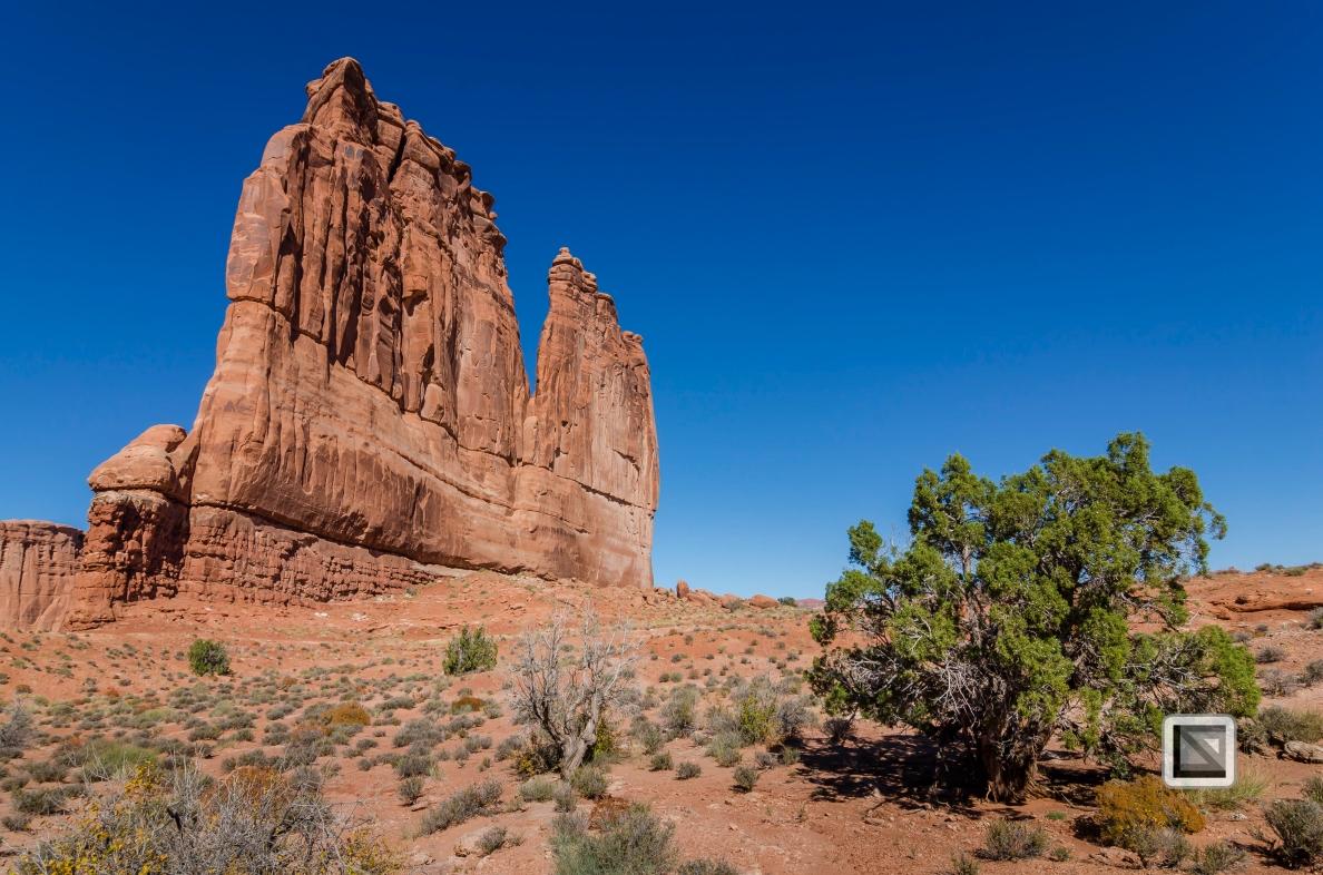 USA - Utah - Arches National Park-4