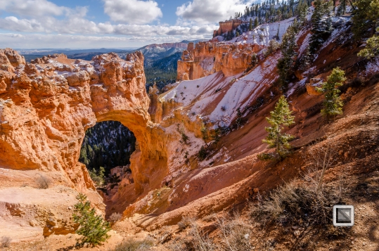 USA - Utah - Bryce Canyon-20