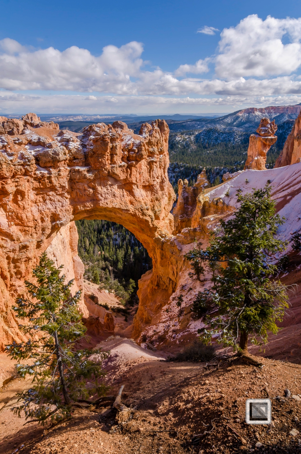 USA - Utah - Bryce Canyon-21