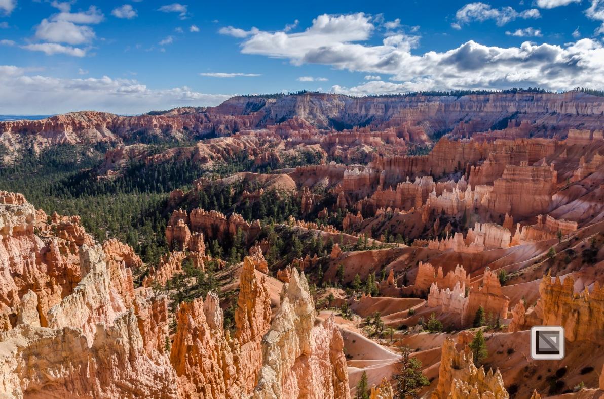 USA - Utah - Bryce Canyon-24