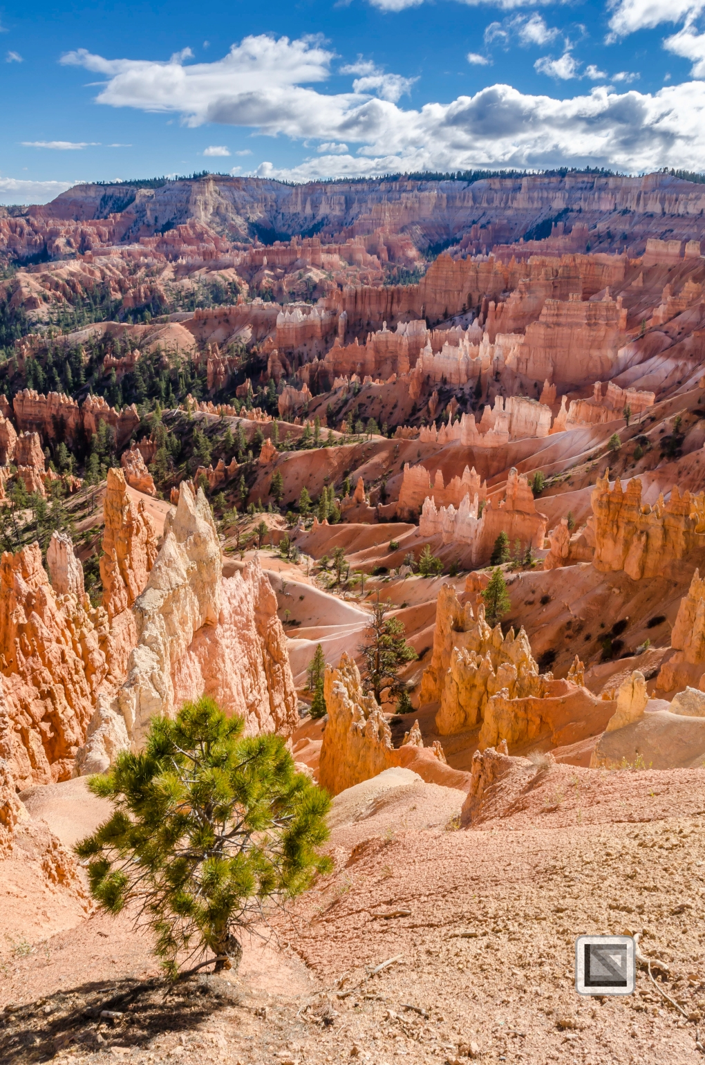 USA - Utah - Bryce Canyon-25