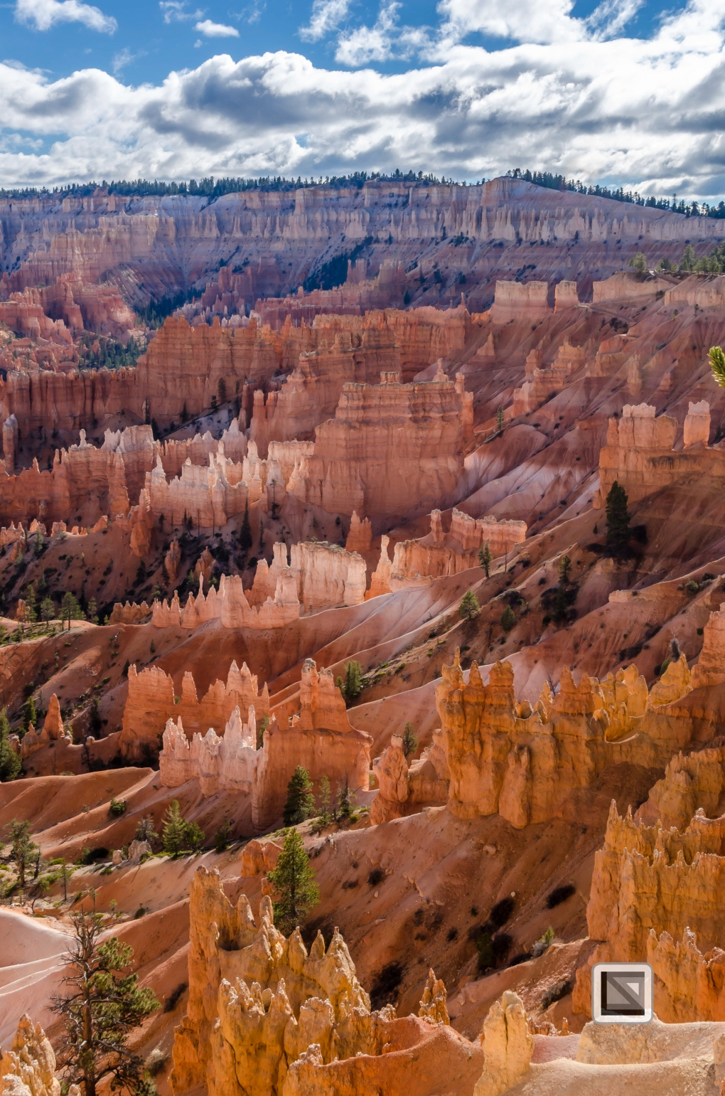 USA - Utah - Bryce Canyon-27