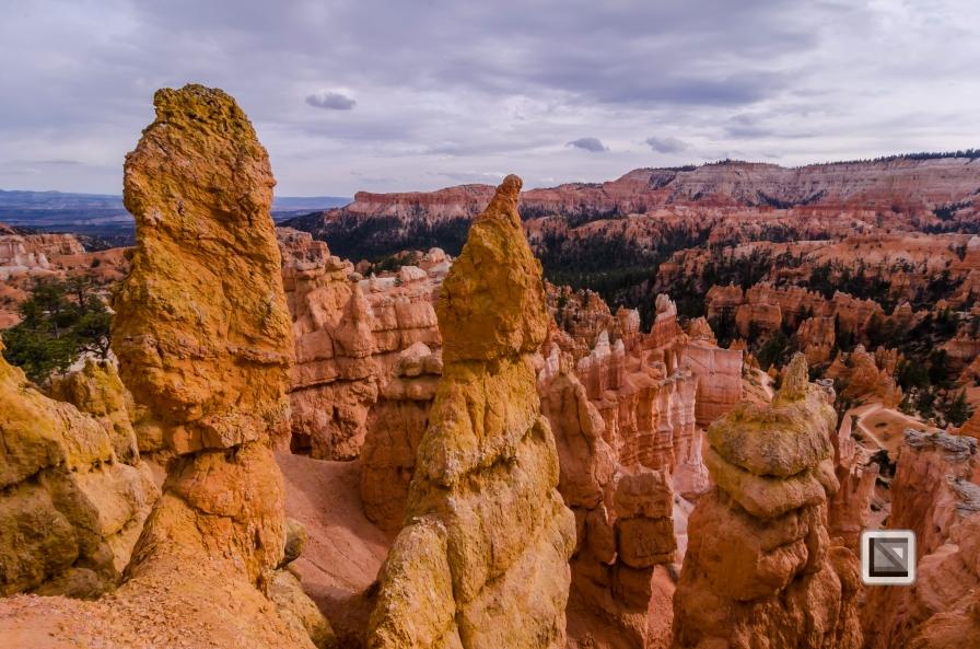 USA - Utah - Bryce Canyon-33