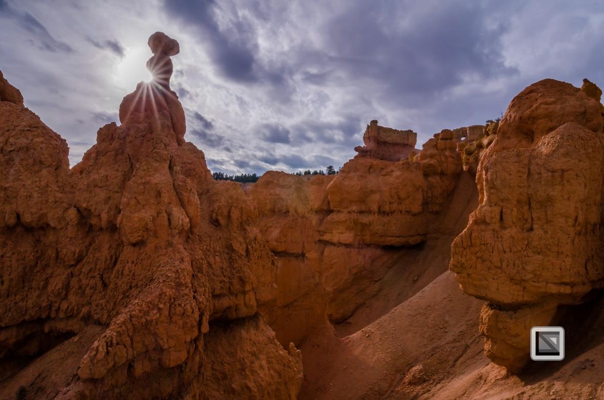 USA - Utah - Bryce Canyon-35
