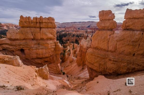 USA - Utah - Bryce Canyon-36