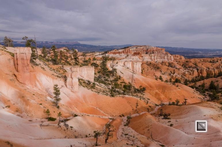 USA - Utah - Bryce Canyon-39