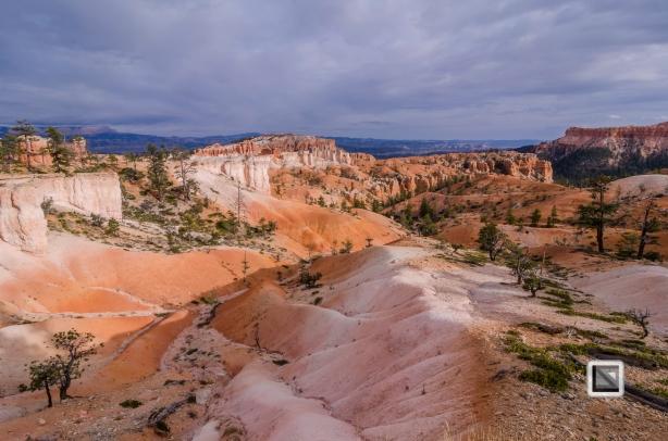 USA - Utah - Bryce Canyon-40
