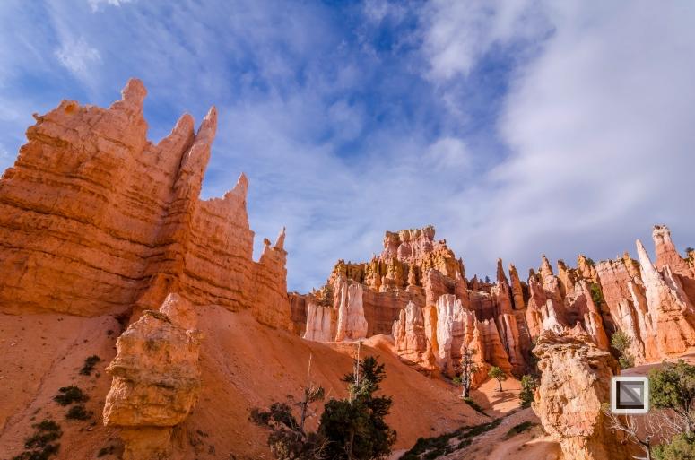 USA - Utah - Bryce Canyon-41