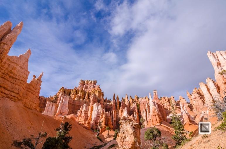 USA - Utah - Bryce Canyon-42