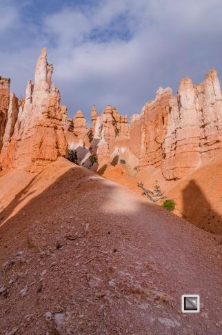 USA - Utah - Bryce Canyon-43