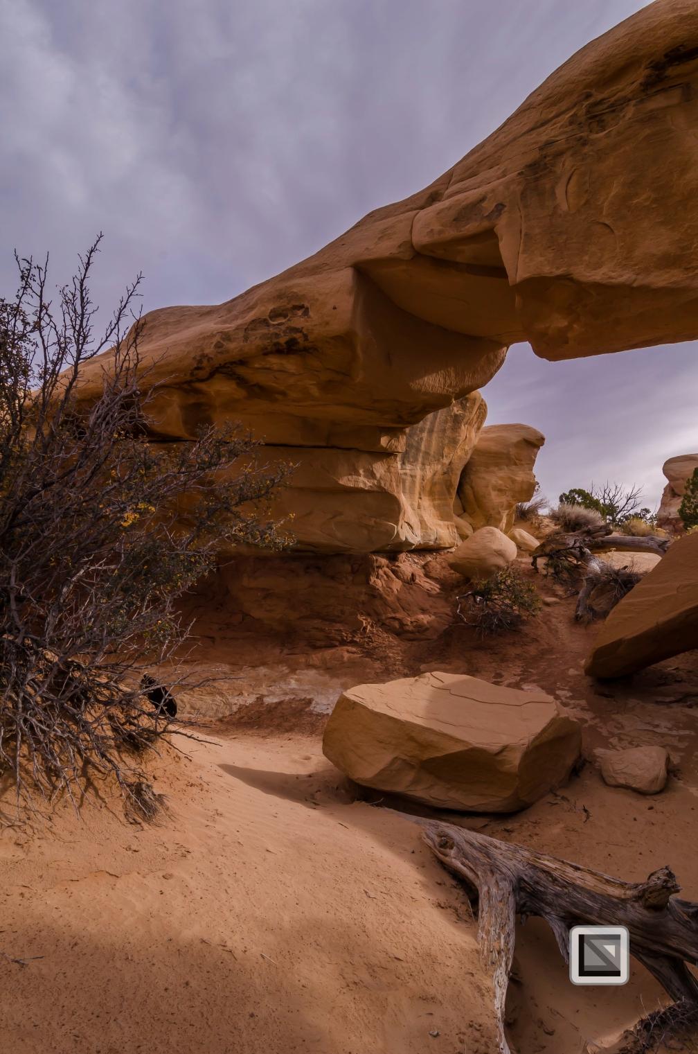 USA - Utah - Grand Staircase Escalante-27