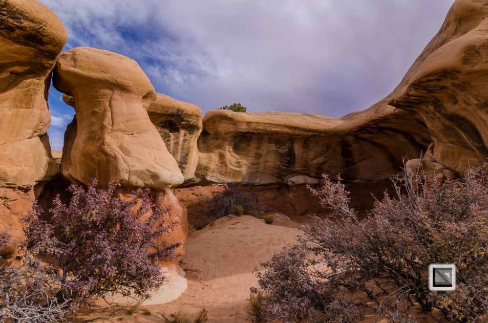 USA - Utah - Grand Staircase Escalante-29