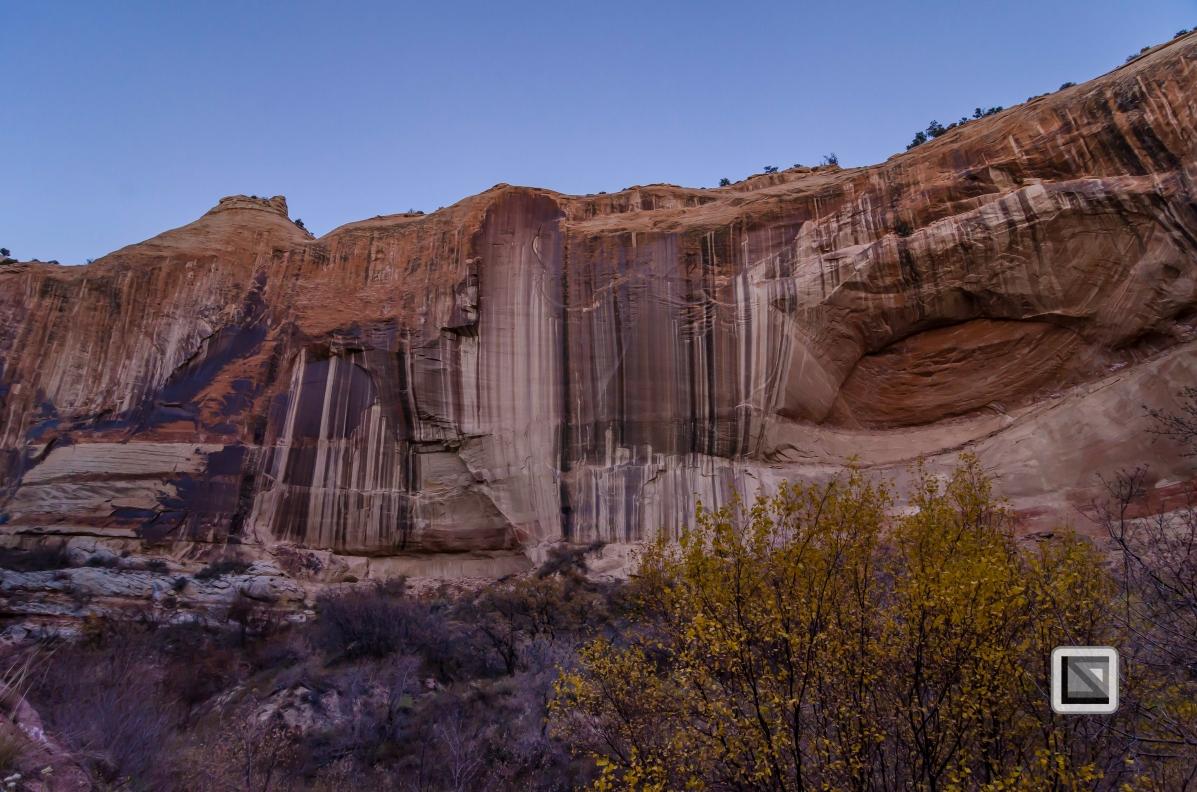 USA - Utah - Grand Staircase Escalante-55