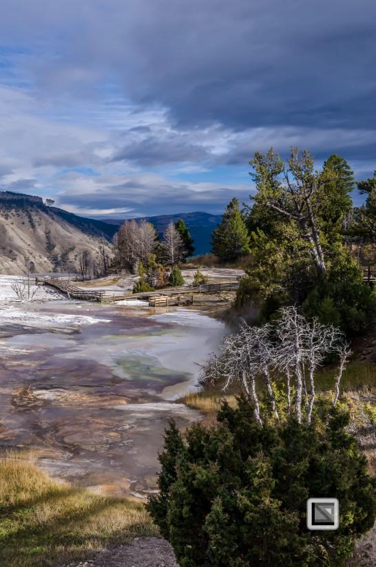 USA - Wyoming - Yellowstone National Park-10